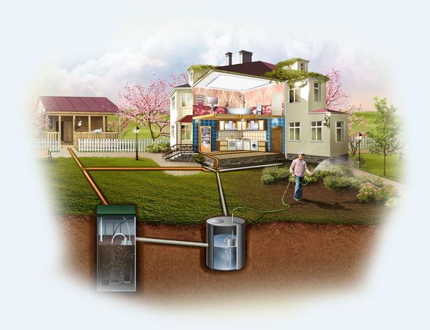 Очищенные при помощи септика Тополь стоки можно использовать для орошения растений
