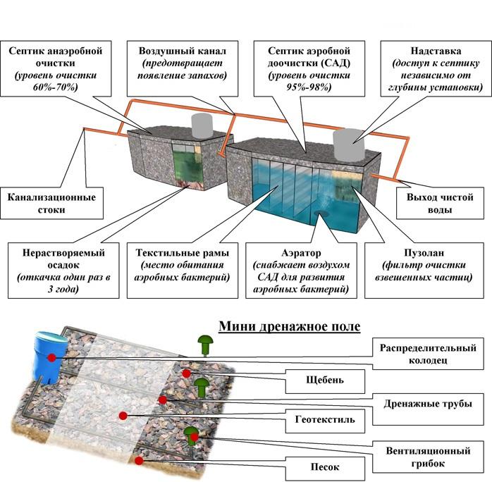 принцип действия анаэробных и  аэробных бактерий